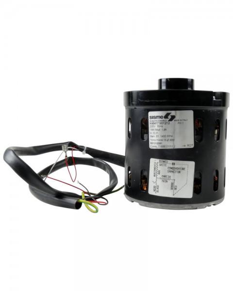 Pumpenmotor Ecowip