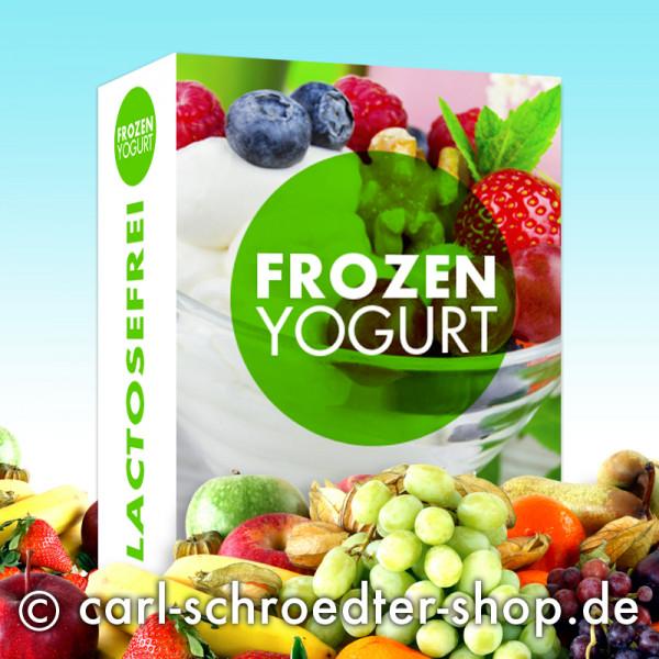 Frozen Yogurt Lactosefrei